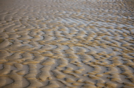 Natural sand beach and water sea pattern Stock Photo - 8609104
