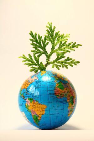 Green leaf on globe photo