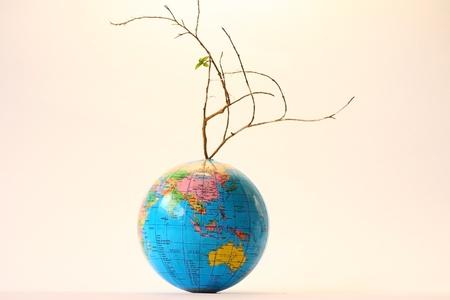 Death tree on globe photo