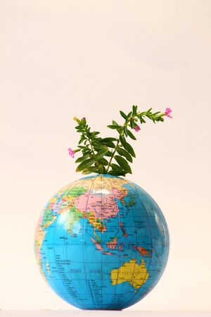 Green leaf and small flower on globe photo