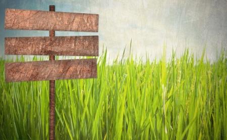 Wood sign on green field grunge style background Standard-Bild