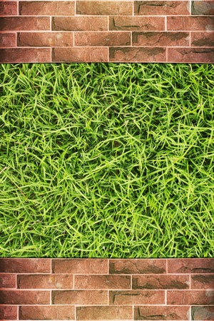 Grunge brick wall with green grass background Stock Photo - 14705081