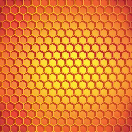 Hexagon blank illustration
