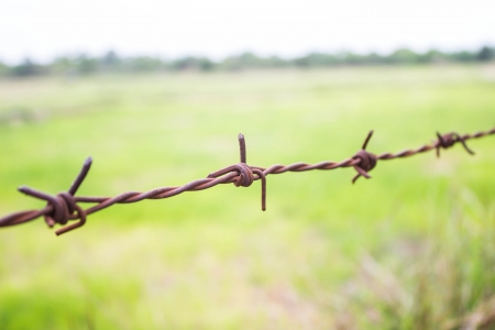 Barbed wire Stock Photo - 25123003