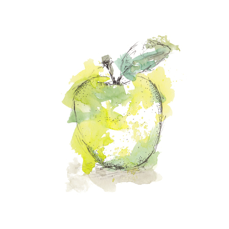 Watercolor sketch of isolated green apple