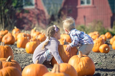 Happy kids trying to lift huge pumpkin on field patch