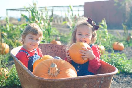Happy girls sitting inside wheelbarrow at field pumpkin patch