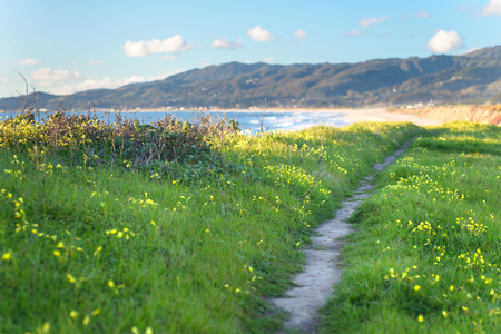 Beautiful scenic path on the green bluff above the ocean beach