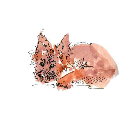 Watercolor illustration of German Shepherd dog sketch isolated on white Standard-Bild
