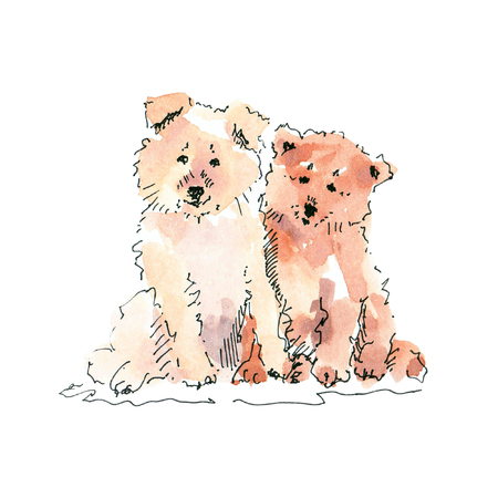 Watercolor illustration of two cute puppies drawing isolated on white