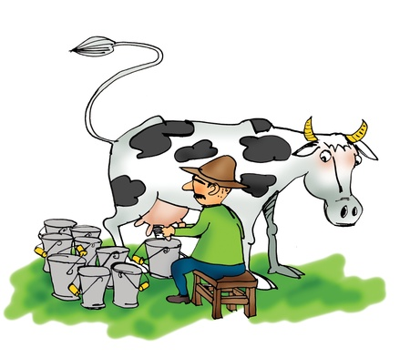 protein crops: Image of a man milking a cow