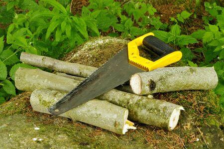serrucho: Serrucho bien utilizado y la le�a en la piedra en el bosque