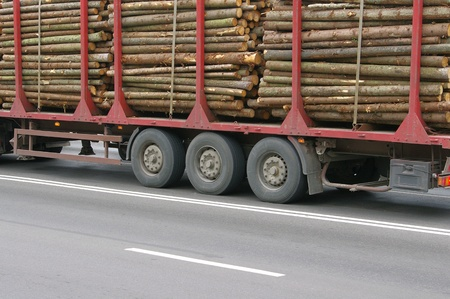 logging: Wooden Logs on Logging Truck Trailer