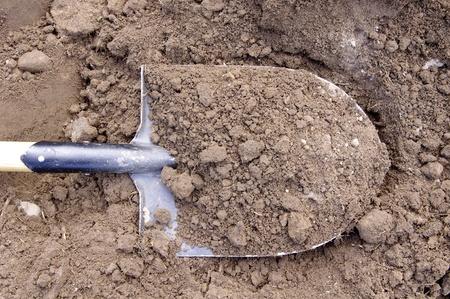 Pelle dans le sol