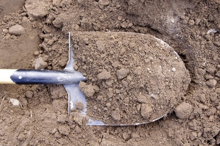 dirt: Shovel in the ground  Stock Photo