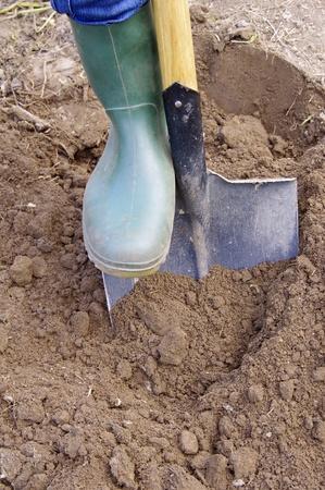 Jardinero cavar con pala de jardín en el suelo de tierra negra