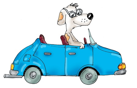 Dog in the car, cartoon