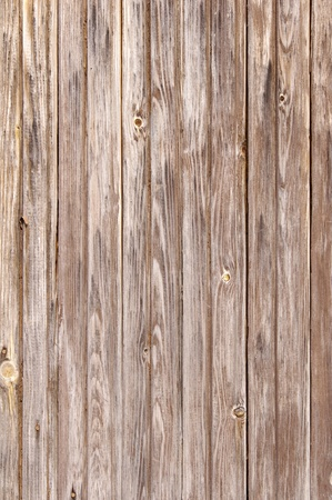 Old wood cut texture