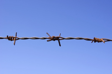 Barbed wire fence detail  Stock Photo - 13548180