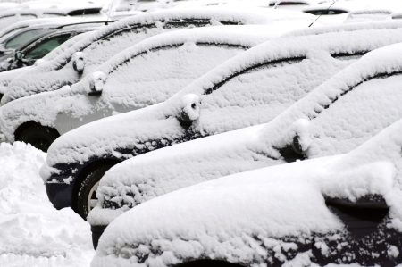 Cars covered in snow during snowstorm  Stock Photo