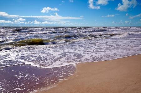Beautiful landscape,baltic see, blue sky, nature panorama Stock Photo