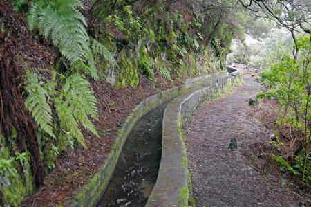 Nacientes de Marcos y Cordero - hermoso sendero en la isla de La Palma, pasando a lo largo del conducto de agua en la Reserva de Los Tilos Naturaleza, La Palma, Islas Canarias, España Foto de archivo - 37438735