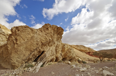 canyon negev: Sandstone rock in Red Canyon in Israel