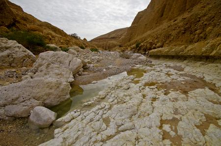 judea: Deep gorge - wadi Zeelim in Judea desert, Israel.