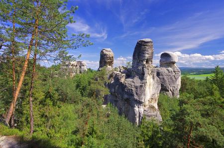 jag: View of sandstone rockies and wood in cesky raj, bohemia, czech republic