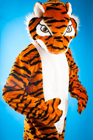 dressing up costume: A Not So Wild Tiger