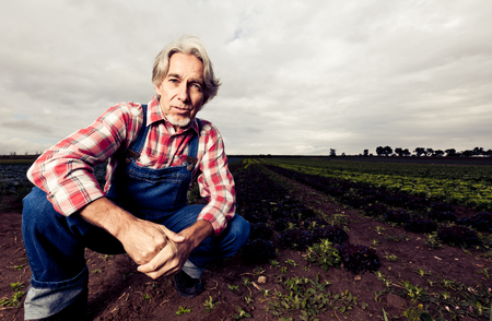 only one mid adult male: Farmer Sitting In Front Of His Field