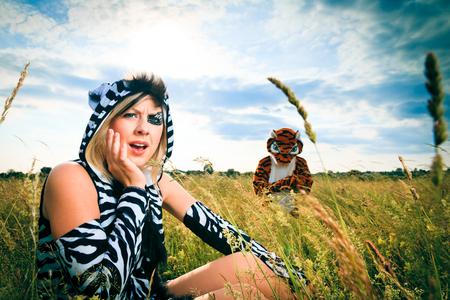 Tiger Stalking Upon A Zebra