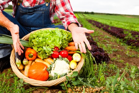 only one mid adult male: Farmer Showing His Produce Stock Photo