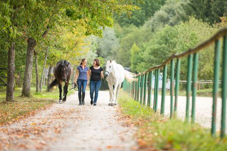 walking paths: Friends With Their Horses