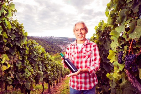 colored bottle: Winemaker Standing By His Vineyard