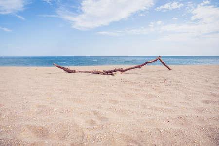Mediterranean Sea Beach on a Bright Summer Day