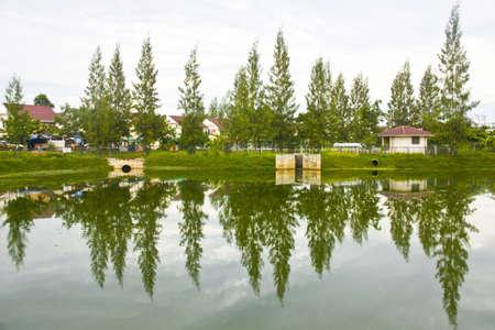 reflect: water reflect