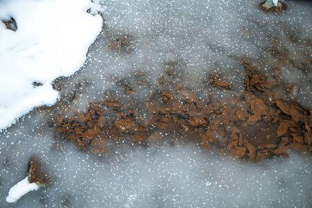 Frozen Water Autumn Leaves Winter Ice Snow