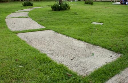 Way on grass1