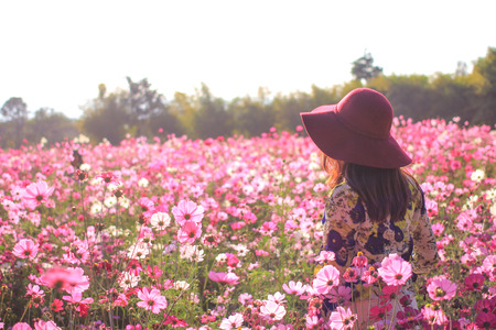 turn back: woman turn back wear red hat enjoying summer in pink cosmos flower field at sunlight Stock Photo