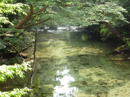 The river in Yaku Islands