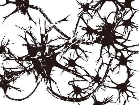 nervenzelle: Synapse