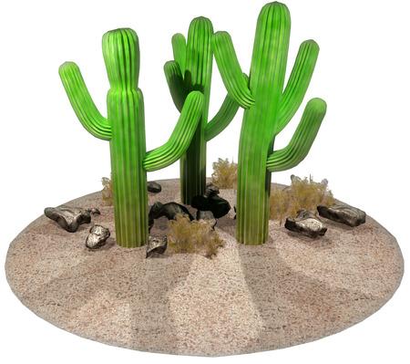 Cactus 写真素材