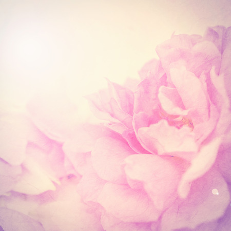 love image: vintage color flowers in soft color style on mulberry paper texture for background Stock Photo