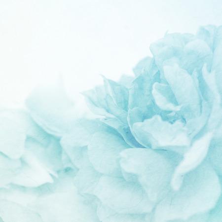 Las flores del color de la vendimia en el estilo de color suave en la textura de papel de morera para el fondo Foto de archivo - 43369689