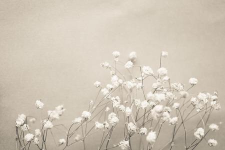 weed flowers in vintage color style