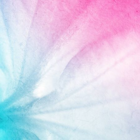 color in: colorful flowers in soft color and blur style for background Foto de archivo