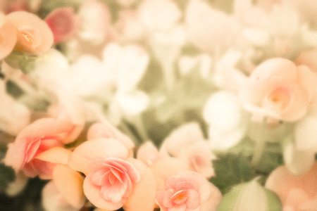 Sweet flowers in vintage color style on mulberry paper texture Stockfoto