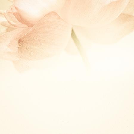 桑紙の質感でソフトの色とぼかしスタイルで甘い色のロータス
