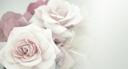 roses pink: Sweet flowers in vintage color style on mulberry paper texture Foto de archivo